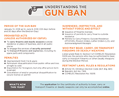 2015.12 Gun Ban Facts - sm