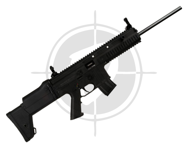 Gun store in Metro Manila, Philippines. Licensed Firearms and Ammunition dealer in the Philippines. Guns for sale. Buy the Anschutz MSR RX 22 Black Hawk Rifle.
