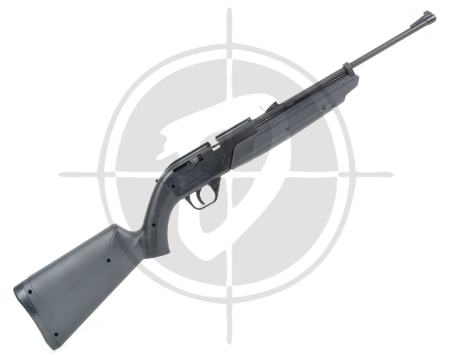 Crosman 760 Pumpmaster airgun picture